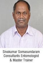 sivakumar-somasundaram-consultants